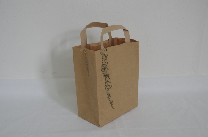 Paper Bag / Leaves